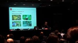Sessió 4: Promoció de la fauna útil i la flora amiga en el verd urbà per lluitar contra plagues i malures. Gestió dels escocells